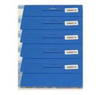 5 x Tapezierspachtel Blau 240 x 120 mm, Tapeten-Andrückspachtel