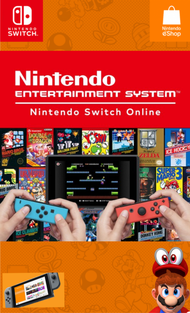 Nintendo Entertainment System : Nintendo Switch Online