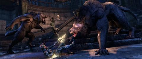 Wolfhunter DLC