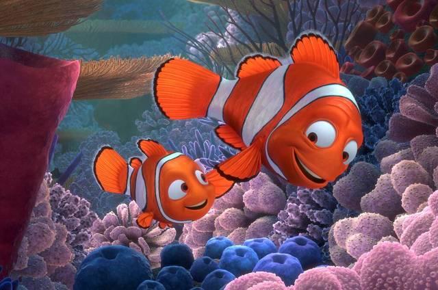 Buscando a Nemo en Vivo – Domingo 17 de Mayo del 2020