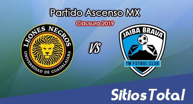 Ver Leones Negros vs Tampico Madero en Vivo – Ascenso MX en su Torneo de Clausura 2019
