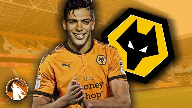 Newcastle United vs Wolverhampton Wanderers en Vivo – Premier League – Domingo 9 de Diciembre del 2018