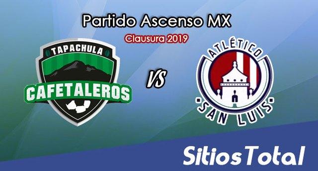 Ver Cafetaleros de Tapachula vs Atlético San Luis en Vivo – Ascenso MX en su Torneo de Clausura 2019