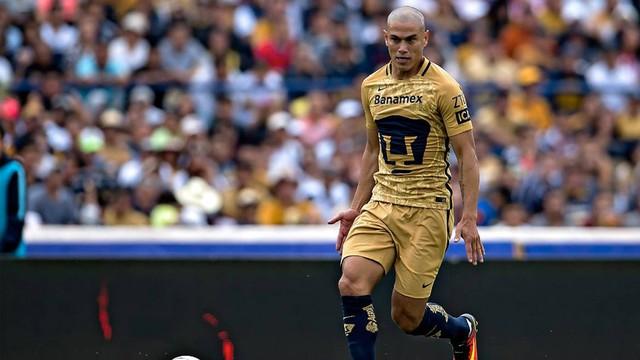 Darío Verón elogiado por  José Luis Chilavert