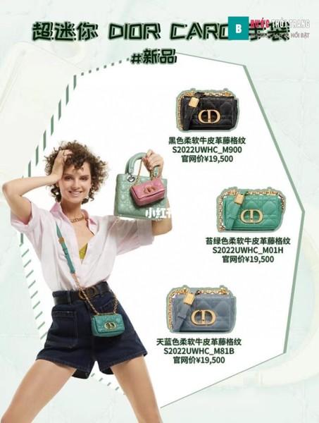 Dior Caro micro bag