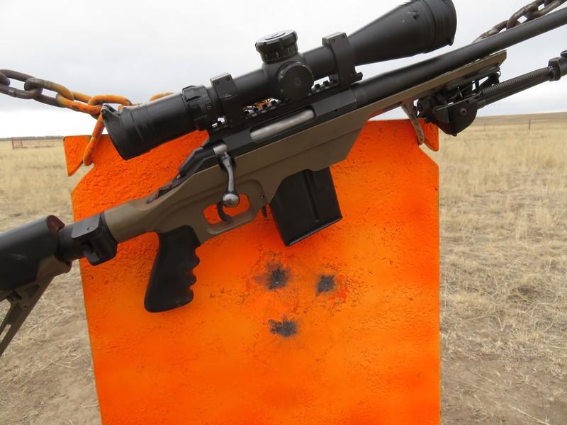 Ruger American Predator 6 5CM | Sniper's Hide Forum