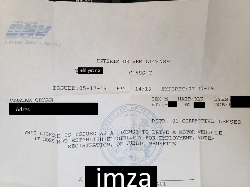 Interim Driver Licence