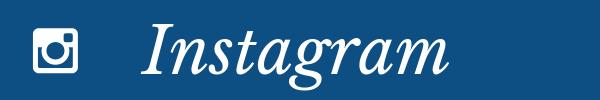 instagram-takip-butonu