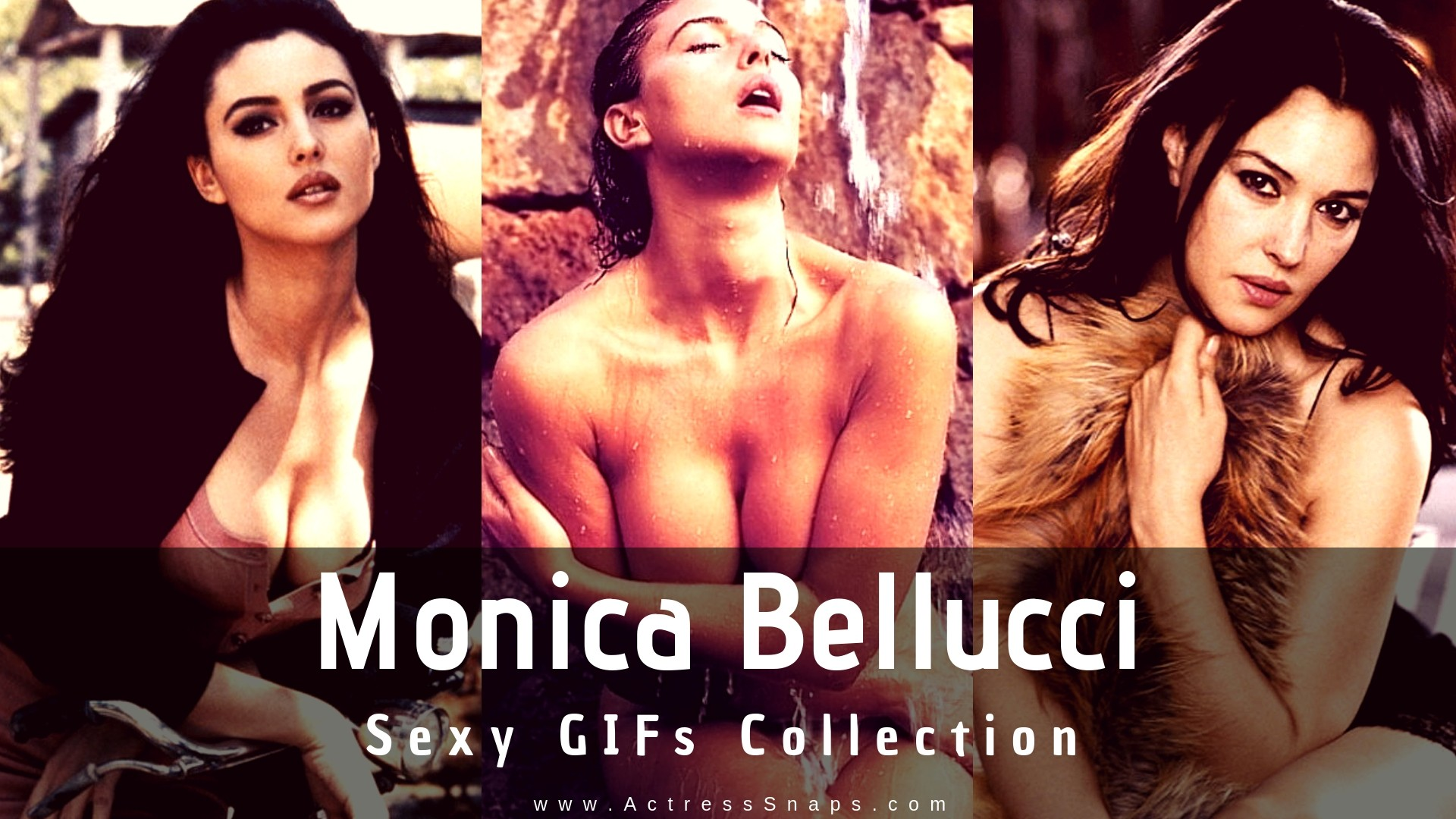 Sexy Monica Belluci GIFs Collection - Sexy Actress Pictures | Hot Actress Pictures - ActressSnaps.com