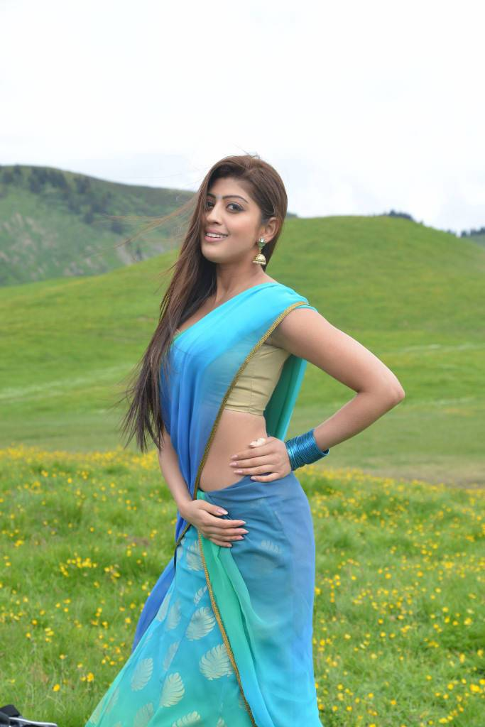 Sexy Pranitha Subhash GIF Collections - Sexy Actress Pictures | Hot Actress Pictures