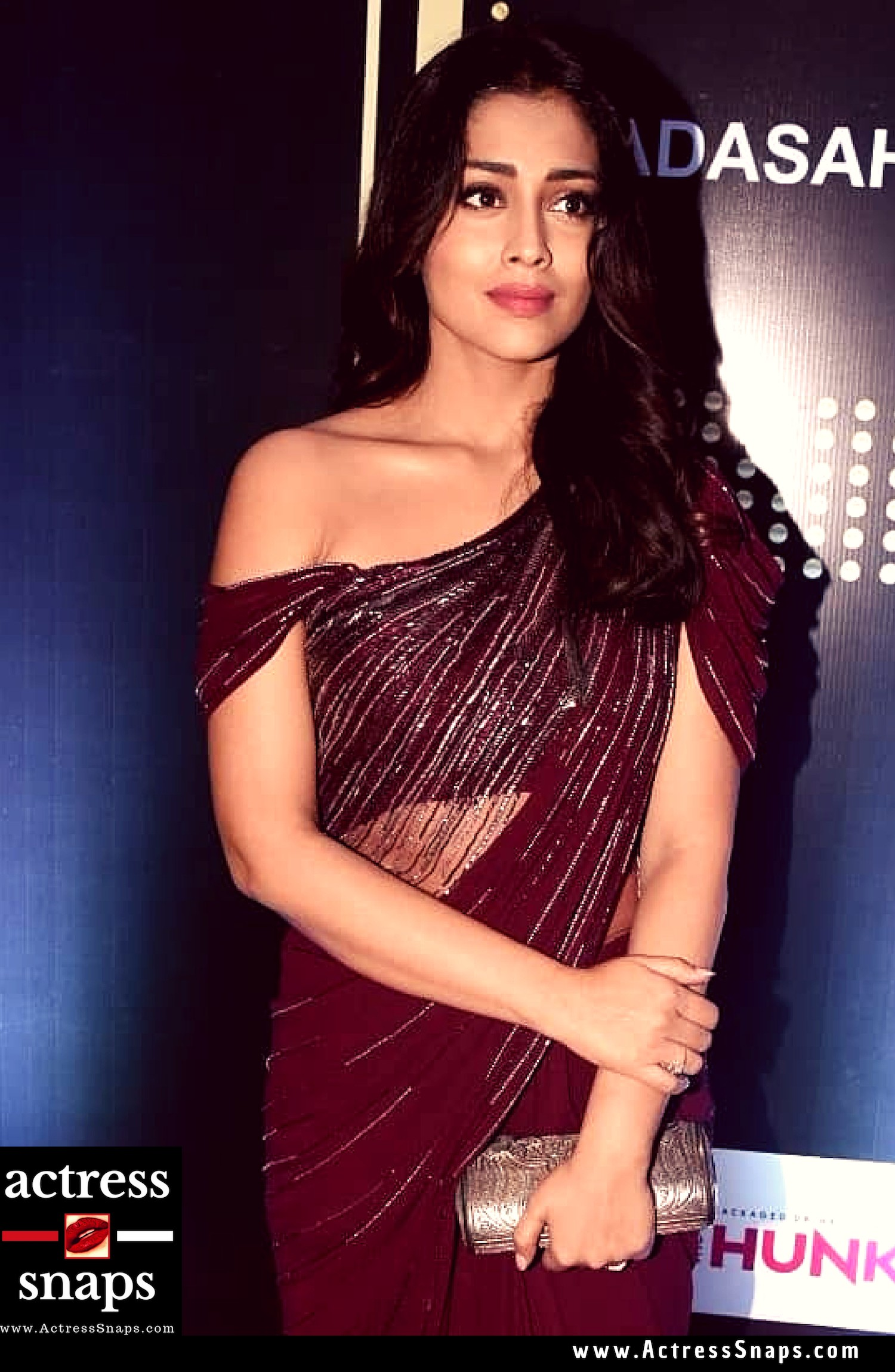 Shriya Saran Photos from DadaSaheb Phalke Awards - Sexy Actress Pictures | Hot Actress Pictures - ActressSnaps.com