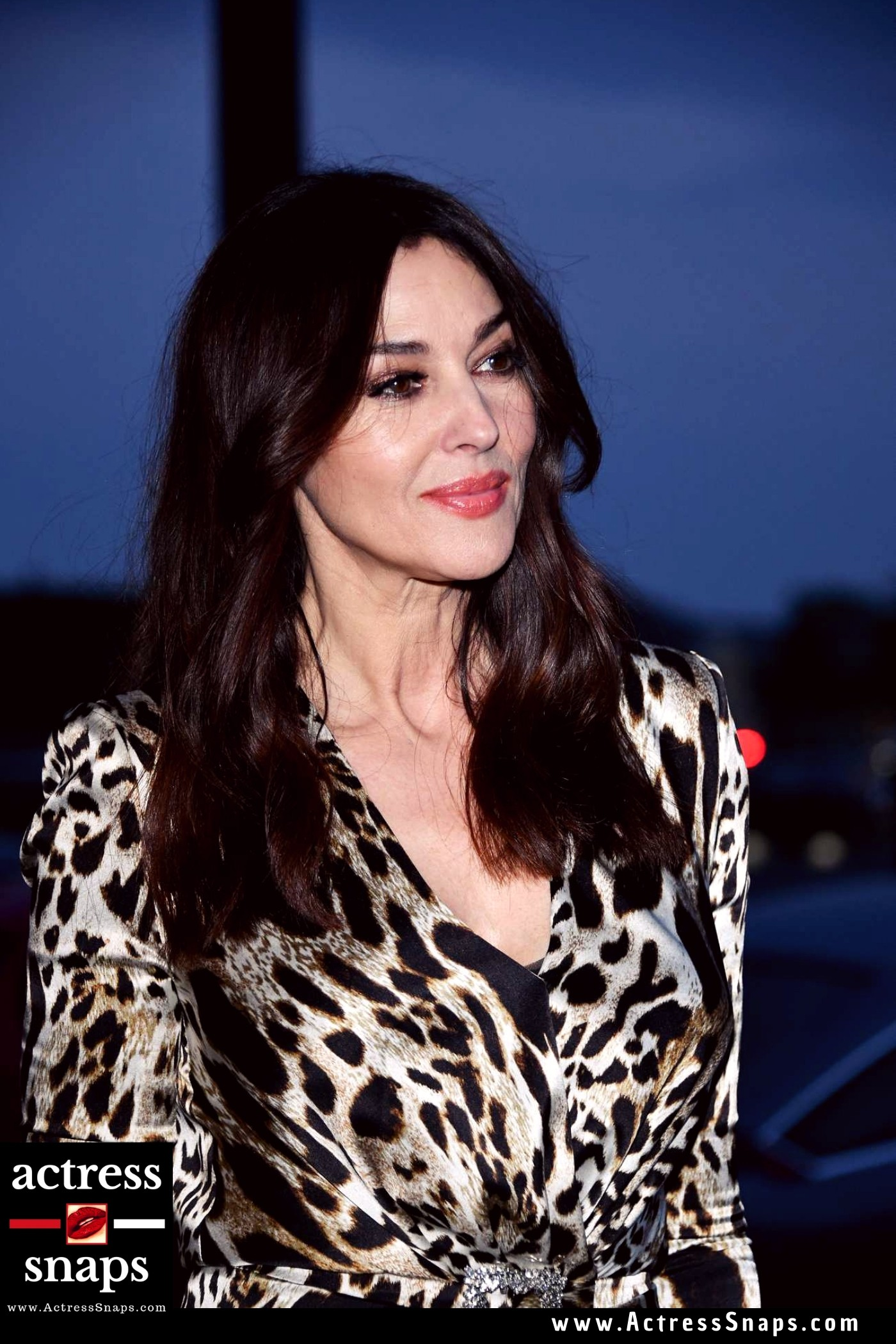 Monica Bellucci - Latest Photos - Sexy Actress Pictures | Hot Actress Pictures - ActressSnaps.com