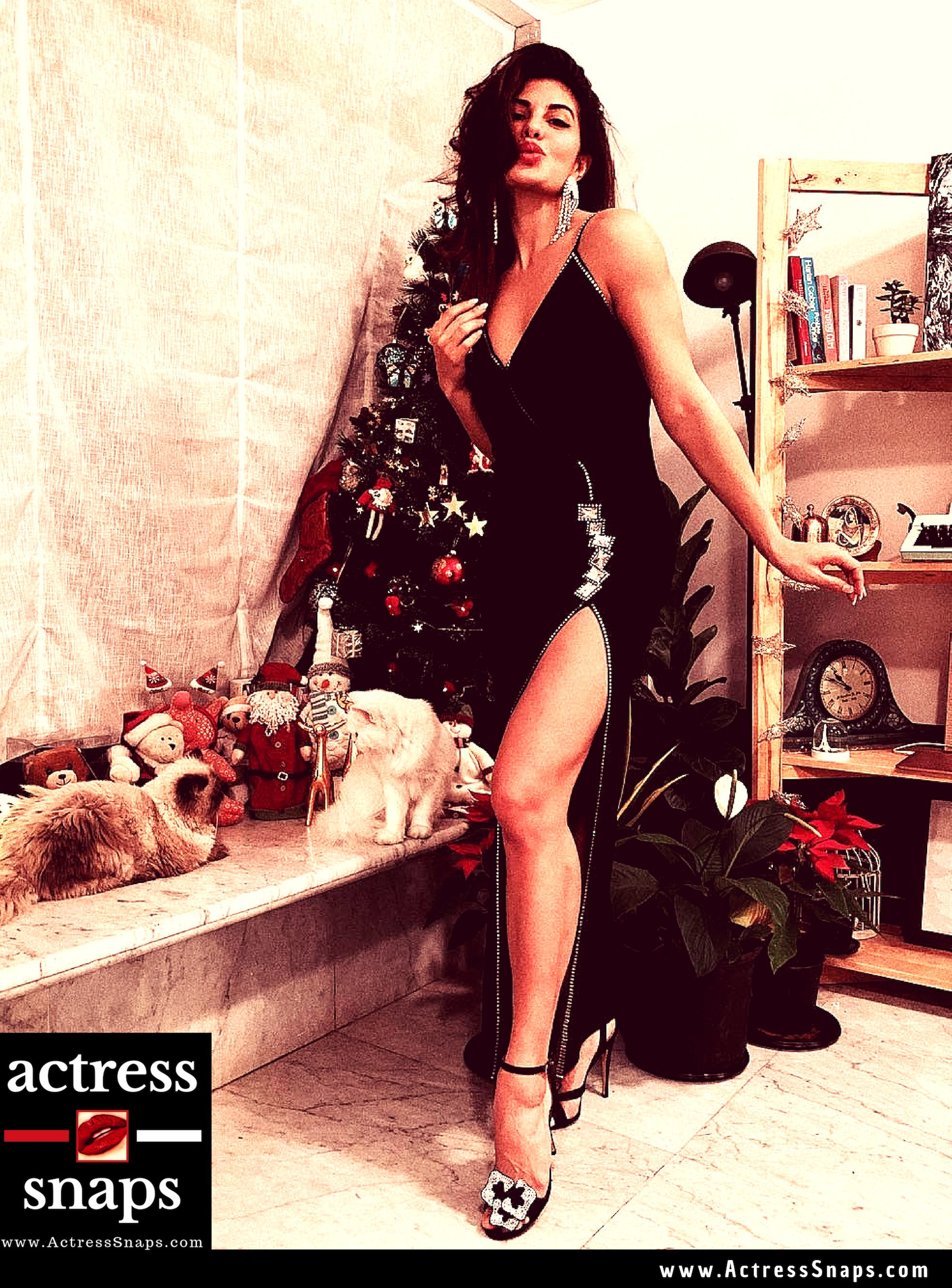 Jacqueline Fernandez wishing Fans a merry Christmas with this Photo post #VanessaHudgens